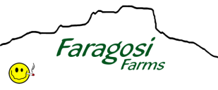 Faragosi Farms