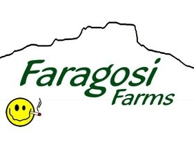 $96 ounces are back at Faragosi Farms! ($120 out the door!)