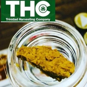 Trinidad Harvesting Company