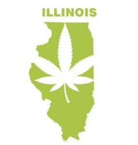 Illinois just became the 11th state to legalize marijuana!